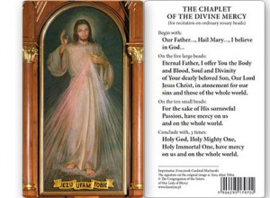 (EN) Plastic Prayer Card - Altar Image of Jesus