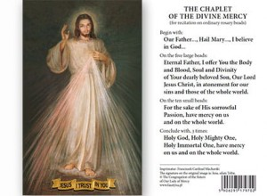 (EN) Plastic Prayer Card - Jesus